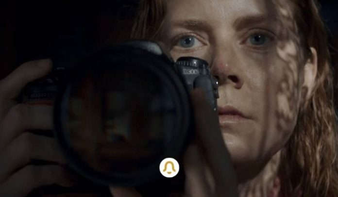 The Woman in the Window Netflix Release Date, Cast, Trailer, Plot and all you need to know
